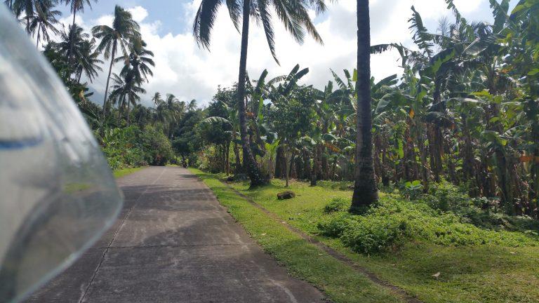 CAMIGUIN