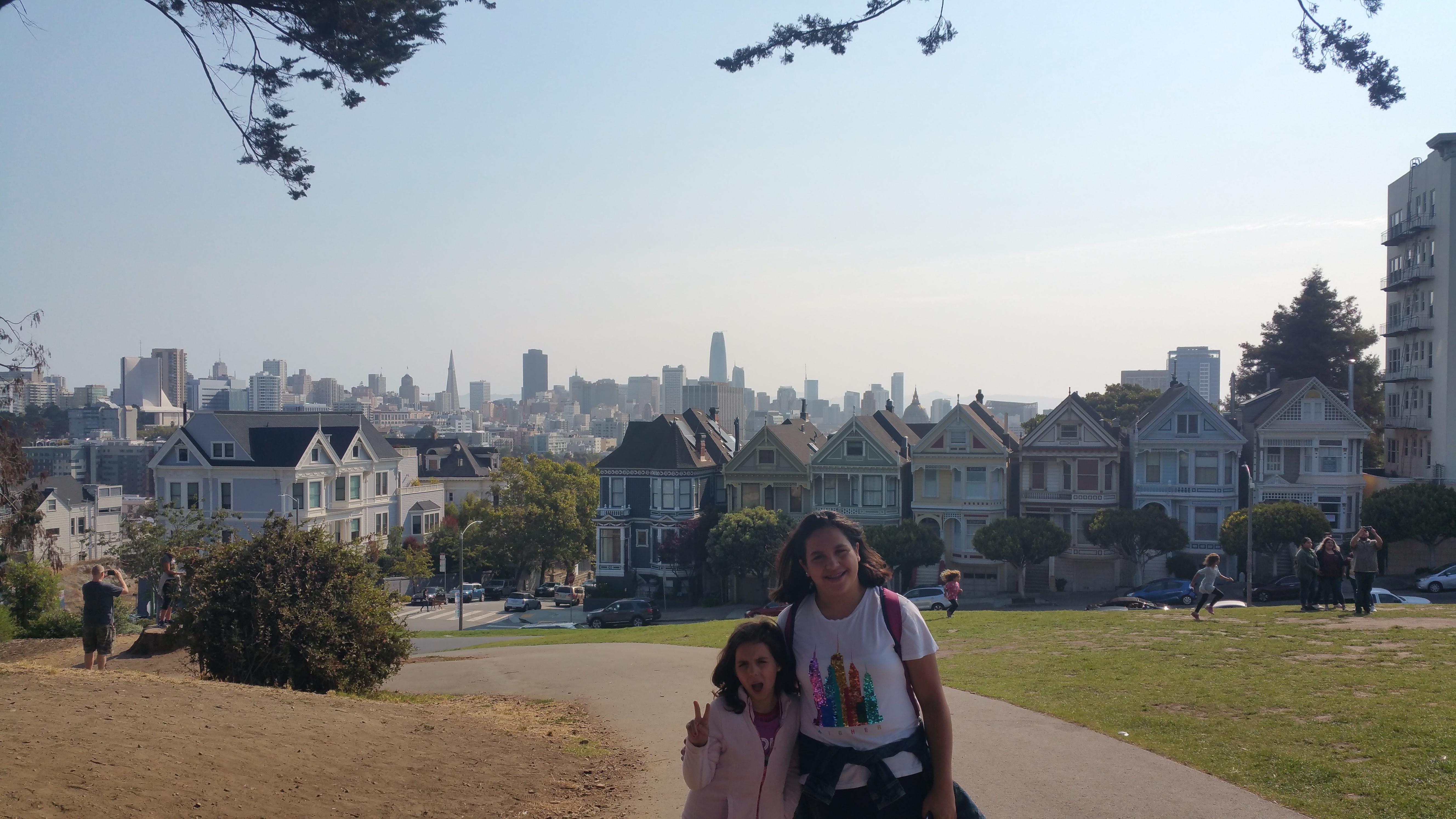 PAINTED LADIES SAN FRANCISCO CALIFORNIA USA